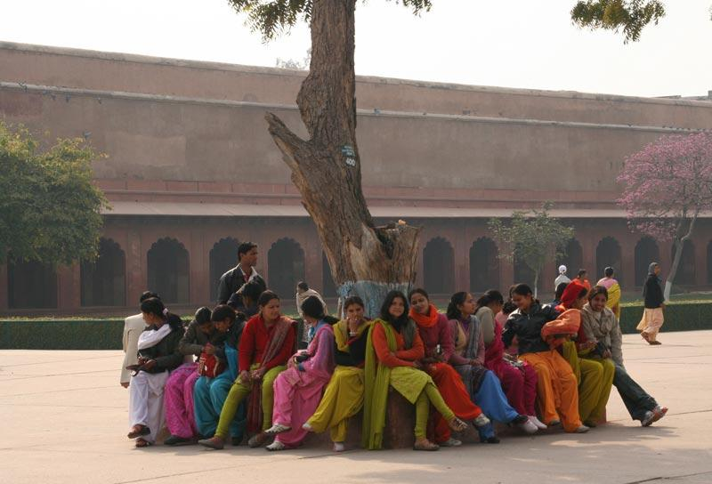 Women seated around a tree near the Taj Mahal.